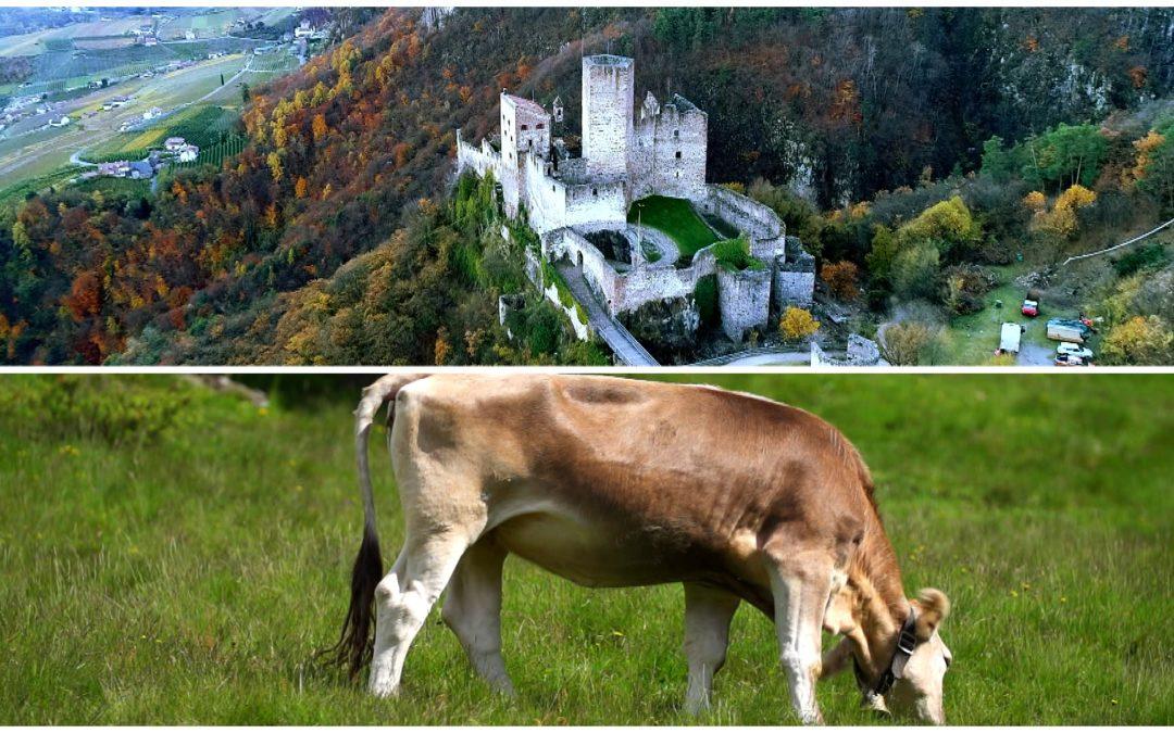 Unterwegs in Südtirol – Kunst und Geschichte in Prissian