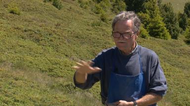 Dialog – Florian Schrott: sein Pflasterweg auf Raschötz